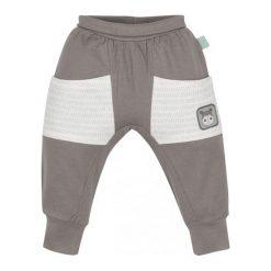 G-Mini Spodnie Chłopięce Hipopotam, 80, Brązowe. Spodnie sportowe dla chłopców marki Reserved. Za 35.00 zł.
