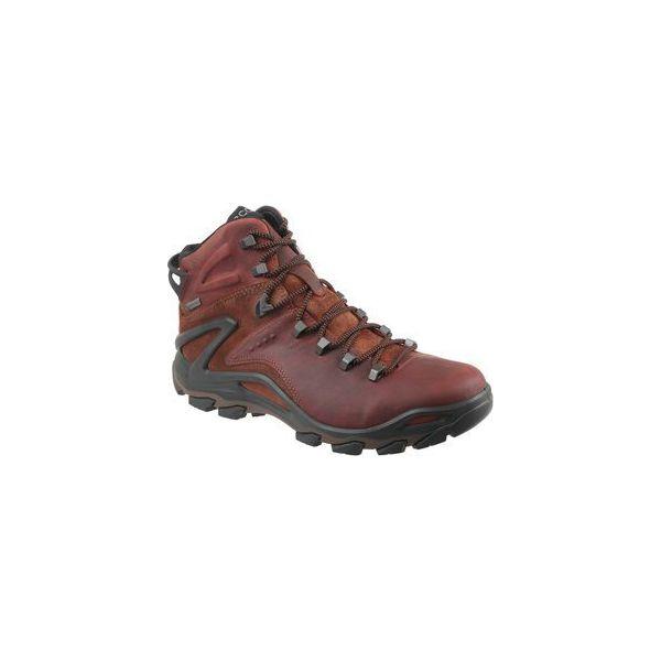1b45f638 Buty trekkingowe Ecco Terra Evo 82650452358 - Brązowe trekkingi ...