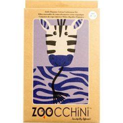 Bielizna Dziewczęca Zebra (5 - 6 lat). Brązowa bielizna dla dziewczynek Zoocchini, z motywem zwierzęcym. Za 27.32 zł.