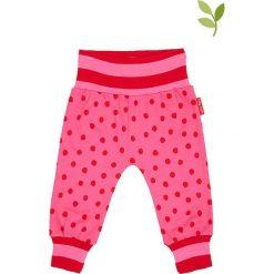 Spodnie w kolorze różowym. Spodenki niemowlęce marki Toby Tiger. W wyprzedaży za 62.95 zł.