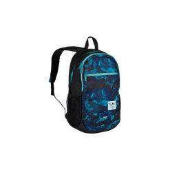 Chiemsee Aw16 Plecak Techpack Two : O0041 High Altitude. Szare torby i plecaki dziecięce Chiemsee, z tkaniny. Za 188.99 zł.