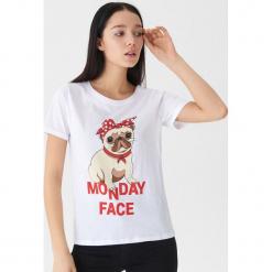 T-shirt z mopsem - Biały. Białe t-shirty damskie House. Za 25.99 zł.