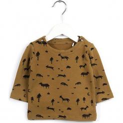 Sweter w kolorze jasnobrązowym. Swetry dla chłopców marki Reserved. W wyprzedaży za 65.95 zł.