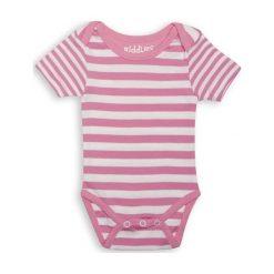 Juddlies Body Sachet Pink Stripe 3-6m. Różowe body niemowlęce Juddlies. Za 30.57 zł.