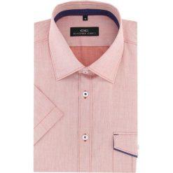 Koszula APPOLINARE 16-01-27-K. Brązowe koszule męskie Giacomo Conti, z bawełny, z kontrastowym kołnierzykiem, z krótkim rękawem. Za 169.00 zł.
