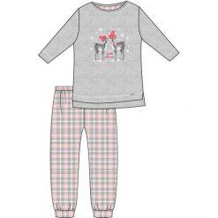 Piżama Young Girl 781/93 Winter Day szara r. 164. Szare bielizna dla dziewczynek Cornette. Za 60.60 zł.