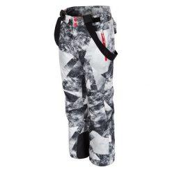 4F Chłopięce Spodnie Narciarskie J4Z17 jspmn401 Allover Czarno-Biały 128. Białe spodnie sportowe dla chłopców 4f, z materiału. W wyprzedaży za 139.00 zł.
