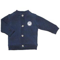 Carodel Sweter Chłopięcy 62 Niebieski. Swetry dla chłopców marki Reserved. Za 49.00 zł.