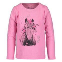 Blue Seven Koszulka Dziewczęca Z Koniem 92 Różowa. Czerwone bluzki dla dziewczynek Blue Seven, z nadrukiem. Za 39.00 zł.