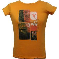 BERG OUTDOOR Koszulka damska PARADISE TREE pomarańczowa r. S (P-10-EL5131402SS15-563-S). T-shirty damskie BERG OUTDOOR. Za 72.63 zł.