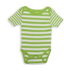Juddlies Body Greenery Stripe 0-3m. Szare body niemowlęce Juddlies. Za 30.57 zł.