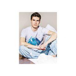 MIGUEL Blue Rock - Tshirt. Szare t-shirty męskie Meet the llama, melanż, z bawełny. Za 89.00 zł.
