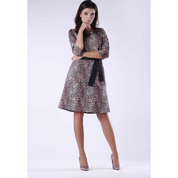 984c6285d6 Dzianinowa Rozkloszowana Sukienka w Panterkę z Wiązanym Paskiem ...