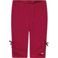 Legginsy w kolorze jagodowym. Legginsy dla dziewczynek marki OROKS. W wyprzedaży za 49.95 zł.