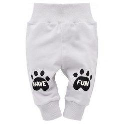 Pinokio Spodnie Dresowe Chłopięce Funny Dog 62 Szary. Spodnie sportowe dla chłopców marki Reserved. Za 28.00 zł.