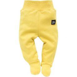 Pinokio Spodenki Chłopięce Funny Dog 56 Żółty. Śpioszki niemowlęce marki Pollena Savona. Za 25.00 zł.