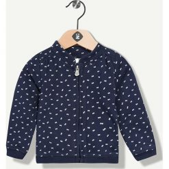 Bluza w kolorze granatowym. Bluzy dla niemowląt Grain de blé et Lisa Rose, z dzianiny. W wyprzedaży za 39.95 zł.