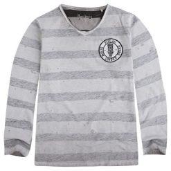 Koszulka w kolorze jasnoszarym. T-shirty dla chłopców marki Reserved. W wyprzedaży za 72.95 zł.