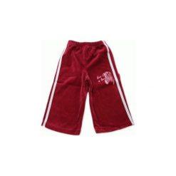Spodnie welurowe z lampasami wino i zeberka rozmiar 80. Brązowe spodnie materiałowe dla dziewczynek GAMET, z haftami, z bawełny. Za 23.00 zł.