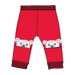 Carodel Chłopięce Dresy Z Pluszowymi Misiami 74 Czerwone. Spodnie sportowe dla chłopców marki Reserved. Za 29.00 zł.