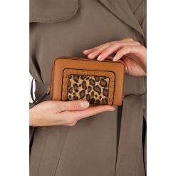 """Portfel """"Ascottyleo"""" w kolorze jasnobrązowym - 15 x 10 x 4,2 cm. Brązowe portfele damskie Scottage, z motywem zwierzęcym, z materiału. W wyprzedaży za 40.95 zł."""