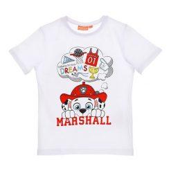 Koszulka w kolorze białym. T-shirty dla chłopców Disney & Paw Patrol, z nadrukiem, z bawełny. W wyprzedaży za 19.95 zł.