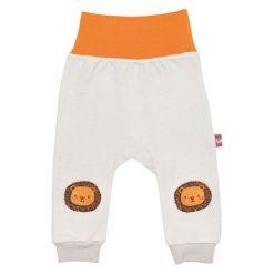 2Be3 Chłopięce Spodnie Dresowe Lew 56 Pomarańczowy/Szary. Spodnie sportowe dla chłopców marki Reserved. Za 25.00 zł.