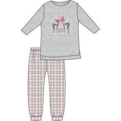 Piżama Kids Girl 780/93 Winter Day szara r. 128. Szare bielizna dla chłopców Cornette. Za 51.73 zł.