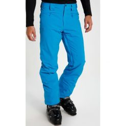 Salomon ICEMANIA  Spodnie narciarskie hawaiian. Spodnie sportowe męskie Salomon, z elastanu. W wyprzedaży za 429.50 zł.