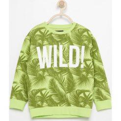 Bluza z tropikalnym motywem - Zielony. Bluzy dla chłopców marki Giacomo Conti. W wyprzedaży za 19.99 zł.