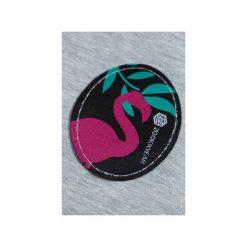 Spodnie dresowe SHAKA Gray Flamingo. Szare spodnie dresowe damskie Zookiwear, z aplikacjami, z dresówki. Za 199.00 zł.