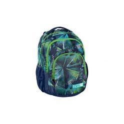 Plecak Szkolny Lekki Paso Modern. Szare torby i plecaki dziecięce PASO, z materiału. Za 99.00 zł.