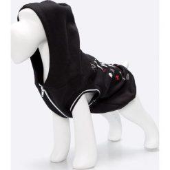 Medicine - Bluza dla psa Comfort Zone. Szare bluzy damskie MEDICINE, z nadrukiem, z bawełny. Za 59.90 zł.