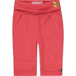 Legginsy w kolorze czerwonym. Czerwone legginsy dla dziewczynek bellybutton, z bawełny. W wyprzedaży za 32.95 zł.