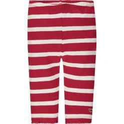 Legginsy w kolorze czerwono-białym. Legginsy dla dziewczynek marki OROKS. W wyprzedaży za 49.95 zł.