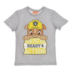Koszulka w kolorze szarym. T-shirty dla chłopców Disney & Paw Patrol, z nadrukiem, z bawełny. W wyprzedaży za 19.95 zł.