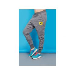 Spodnie Loose Szare Panda. Szare spodnie dresowe damskie Zookiwear, z bawełny. Za 199.00 zł.