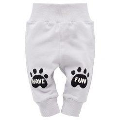 Pinokio Spodnie Dresowe Chłopięce Funny Dog 80 Szary. Spodnie sportowe dla chłopców marki Reserved. Za 28.00 zł.