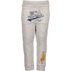 Blue Seven Spodnie Dresowe Chłopięce 110 Szare. Niebieskie spodnie sportowe dla chłopców Blue Seven, z bawełny. Za 69.00 zł.