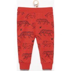 Spodnie dresowe z nadrukiem zwierząt - Czerwony. Spodnie sportowe dla chłopców Reserved, z motywem zwierzęcym, z dresówki. W wyprzedaży za 14.99 zł.