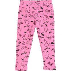 Różowe Legginsy Blackberry. Czerwone legginsy dla dziewczynek Born2be. Za 24.99 zł.
